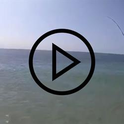 Rio Fishing 2